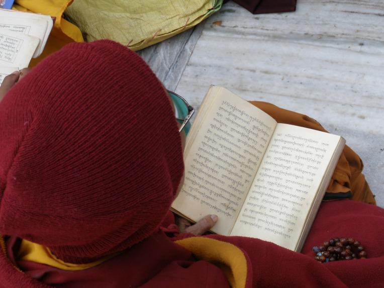 Monge budista lendo textos sagrados (Foto: Matheus Pinheiro de Oliveira e Silva)